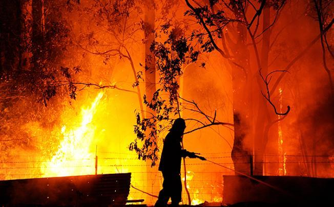bushfire - photo #25