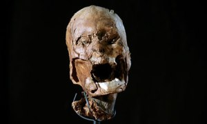 Is this the mummified head of King Henri IV?
