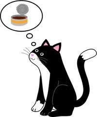 THINKING - cat