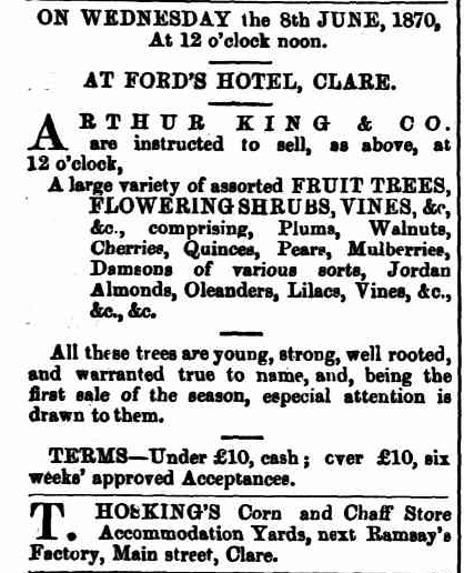 TROVE. Northern Argus 13May1870p.2